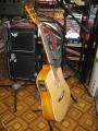 Гитара электроакустическая Ephony 239-EQ