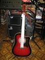 Гитара акустическая Euphony SW239  RSB