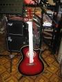 Гитара акустическая Euphony SWJ 239 TWRS