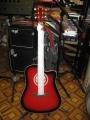 Гитара акустическая Euphony SW 201TWRS
