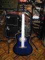 Гитара акустическая Euphony SW 201 BLS