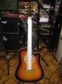 Гитара акустическая Euphony SW 201 SB