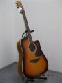 Гитара акустическая Euphony (USA) EW-215 3TS (Вырез)