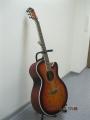 Гитара акустическая Euphony (USA) SL-20DSL / Exclusive Series 20