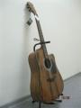 Гитара акустическая Euphony (USA) EW-005  / Exclusive Series 201