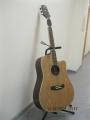 Гитара акустическая AOSEN (Japan)ADC 601-GN / Матовая отделка (В