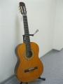 Гитара классическая Euphony (USA) EC-100 YW