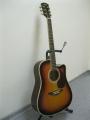 Гитара акустическая Euphony (USA) EW-280-CTS