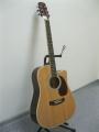 Гитара акустическая Euphony (USA) EW-280-CN
