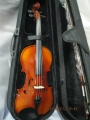Электро-акустическая скрипка Euphony (USA) EV-65