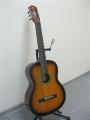 Гитара классическая Alden (Germany) SG-SS