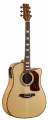 Гитара акустическая Martinez W – 124BC/N
