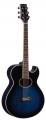 Гитара акустическая Martinez FAW – 805/BL