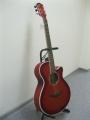 Гитара акустическая Euphony (USA) SE-10RDS / Exclusive Series 20