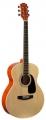 Гитара акустическая Colombo LF – 4000/N