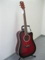Гитара акустическая Euphony (USA) EW-215 TWR  (Вырез)