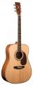 Гитара акустическая LUCIA BD - 4105 / N