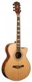Гитара акустическая LUCIA BJ - 40011 C / N