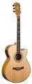 Гитара акустическая LUCIA BJ - 4009 CE / N