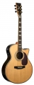 Гитара акустическая LUCIA BJ - 4106 CE / N