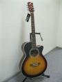 Гитара акустическая Swift Hors (England) W80C/C3TS
