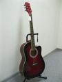 Гитара акустическая Euphony (USA) EW-100 CTWRS