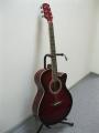 Гитара акустическая Ultra  B 235 RDS /  NEW Collection 2013