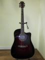 Гитара акустическая Euphony (USA) EW-201 CRD (Вырез)