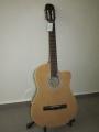 Гитара классическая ФОЛК Euphony (USA) EW-110 N