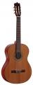 Гитара классическая MARTINEZ FAC-1020