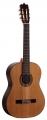 Гитара классическая MARTINEZ FAC-1060