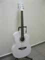 Гитара акустическая Euphony (USA) EW-100 CWH