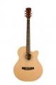 Гитара акустическая Alicanto E4040 N