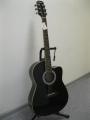 Гитара электроакустическая Euphony (USA) EW-100 EQ / BK