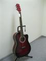 Гитара электроакустическая Euphony (USA) EW-100 CEQ TWRS (Вырез)