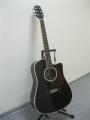 Гитара электроакустическая Euphony (USA) EW-280-CEQ-BK