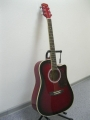 Гитара электроакустическая Euphony (USA) EW-280-CEQ-TWRS