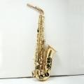 Альт саксофон Vibra (France) VAS-A50G (II)/New Model Student C
