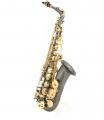 Альт саксофон Antigua AAS-3100BQ / Student Custom Pro Series