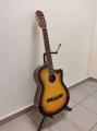 Гитара классическая фолк Euphony (USA) EW-110-C3TS
