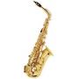 Альт саксофон Vibra (France)  VAS-MC520G