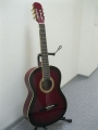 Гитара классическая Euphony (USA) EC-100 TWRS