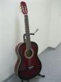 Гитара классическая Euphony (USA) EC-100-TWRS