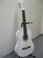 Гитара классическая  N. Amati / Z-39WH / Z-Series