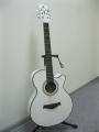 Гитара акустическая Swift Hors (England) -W80C/WH