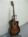 Гитара акустическая Euphony (USA) EW-100 C3TS