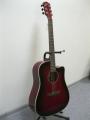 Гитара акустическая Euphony (USA) ED-300 CTWRS/ NEW Model 2013!