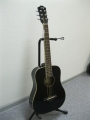 Гитара акустическая Euphony Baby GW-130 BK (1/2)
