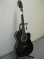 Гитара электроакустическая Euphony (USA) EW-100 CEQ / BK