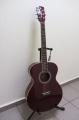 Гитара акустическая Alicante Acoustic AGA-300 WRS